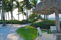 Free Beach Sea Tree Nature Outdoor Villa