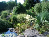 Free Images : landscape, nature, waterfall, plant, flower ...