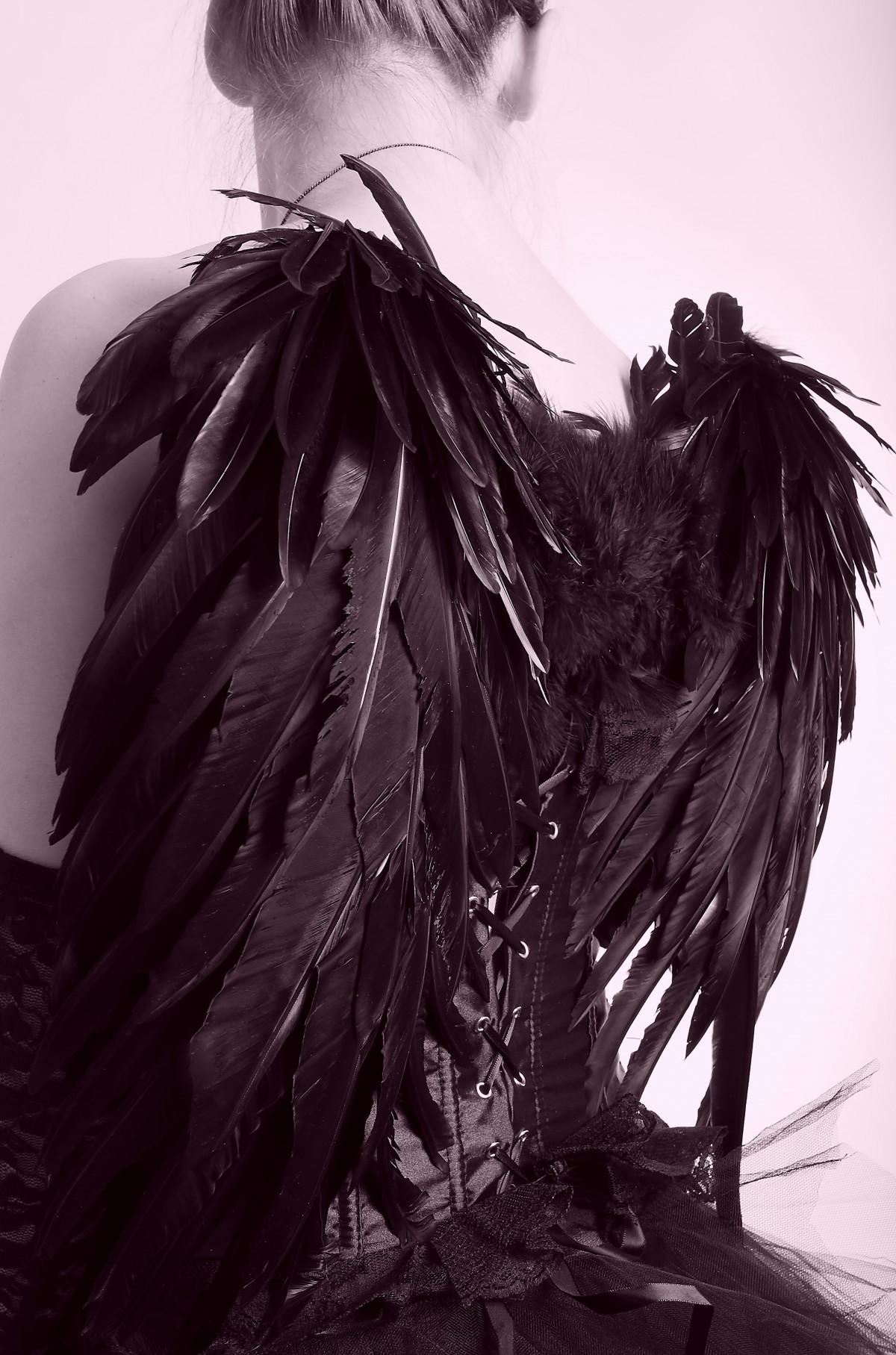 Gambar  bayangan hitam kreatif hitam dan putih terbang