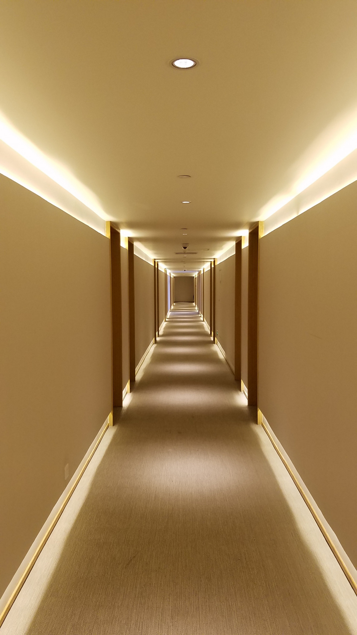 Free Images  floor ceiling hall empty room lighting