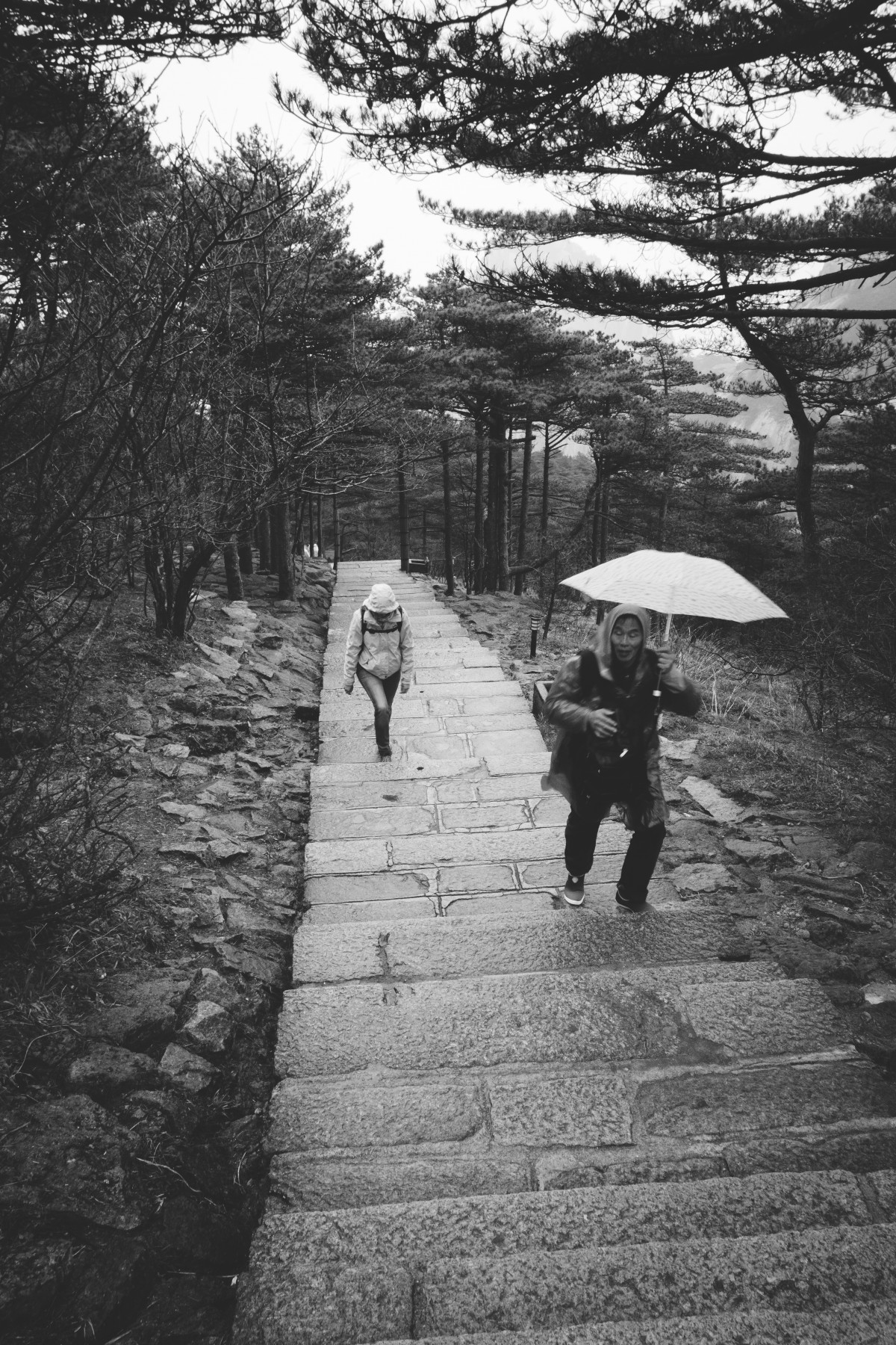 Free Images  person snow winter black and white rain