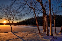 Free Tree Nature Branch Snow Cold Sunset