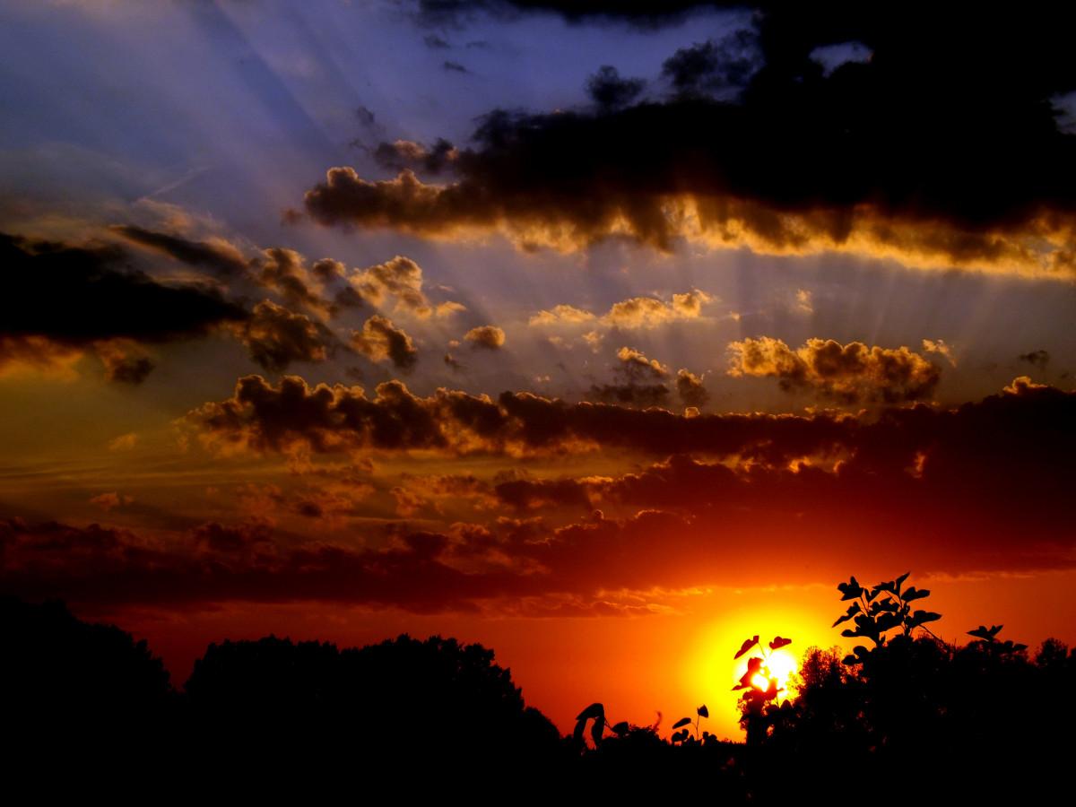 Background Hd Wallpaper Girl Free Images Water Horizon Cloud Sun Sunrise Sunset