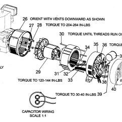 Diagram Simple Generator Emg Wiring Tele Parts All Data