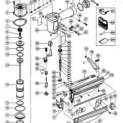 Hitachi Nail Gun Parts Diagram Squirrel Organs Great Installation Of
