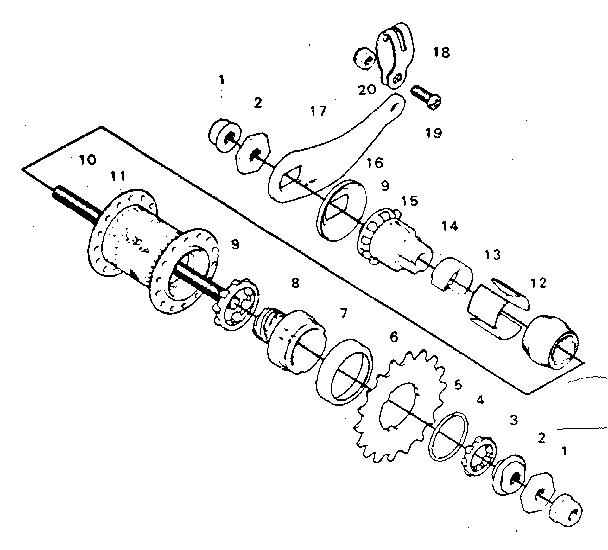 Bicycle Rear Hub Parts Diagram : 30 Wiring Diagram Images