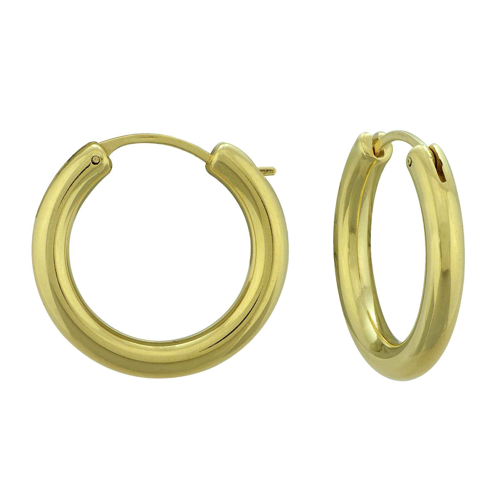 10k Gold Resin Hoop Earrings