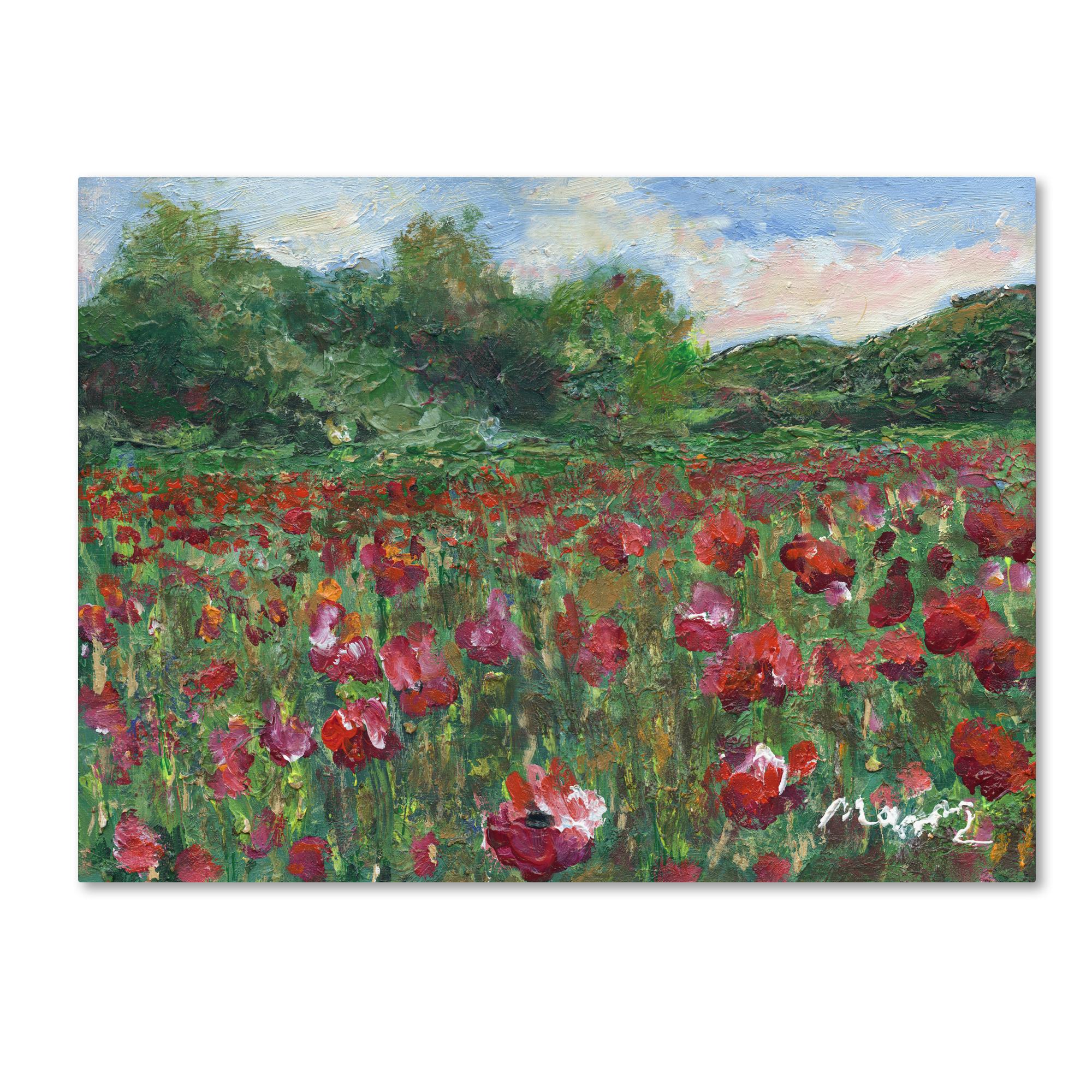 Trademark Global Manor Shadian Poppy Field Wood Canvas Art