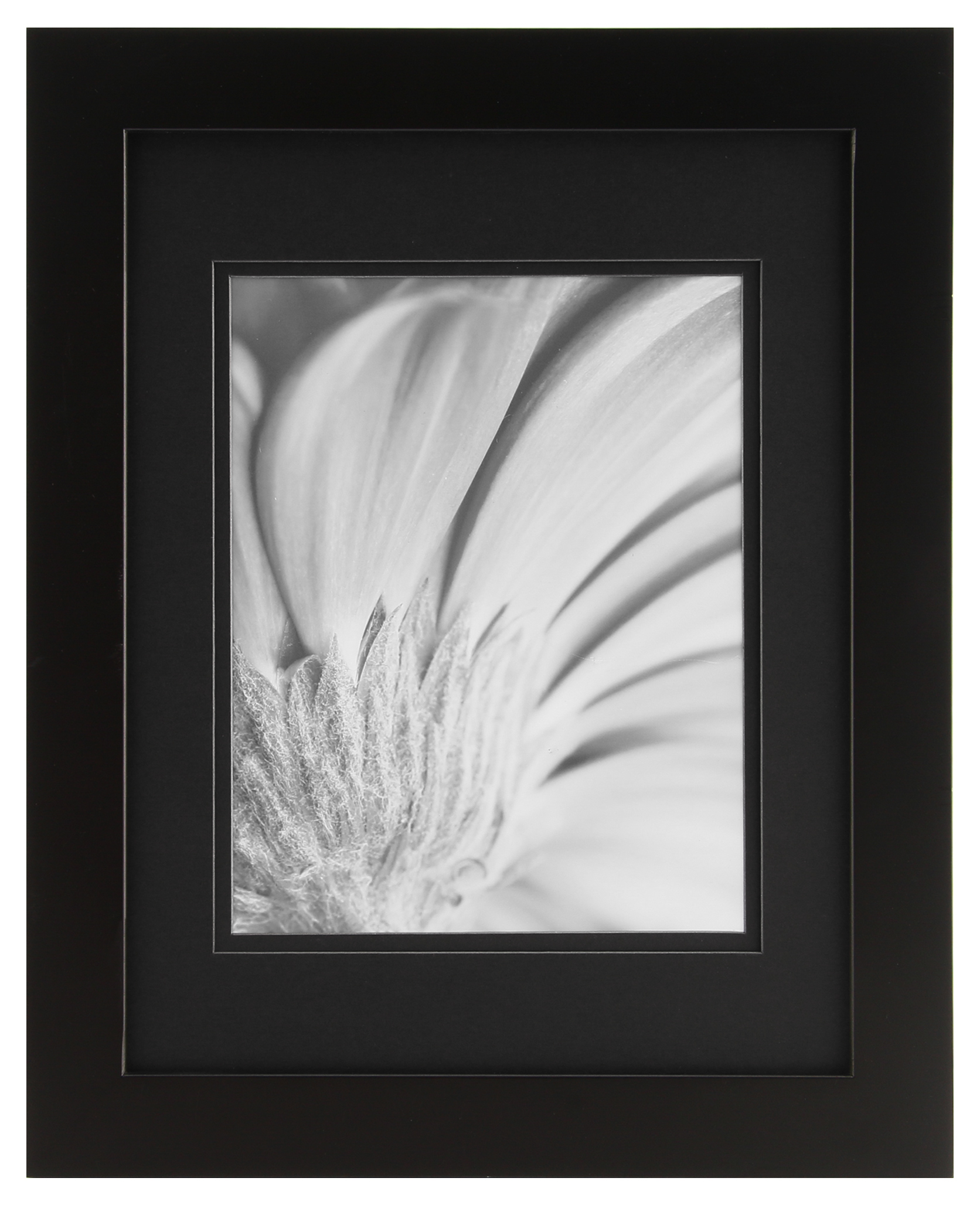 Solutions 11x14 Black Frame Matted 8x10