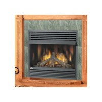 Napoleon Fireplaces GVF421N Natural Gas Fireplace - Sears ...