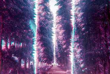 forest purple psychedelic stocksy passage surreal through