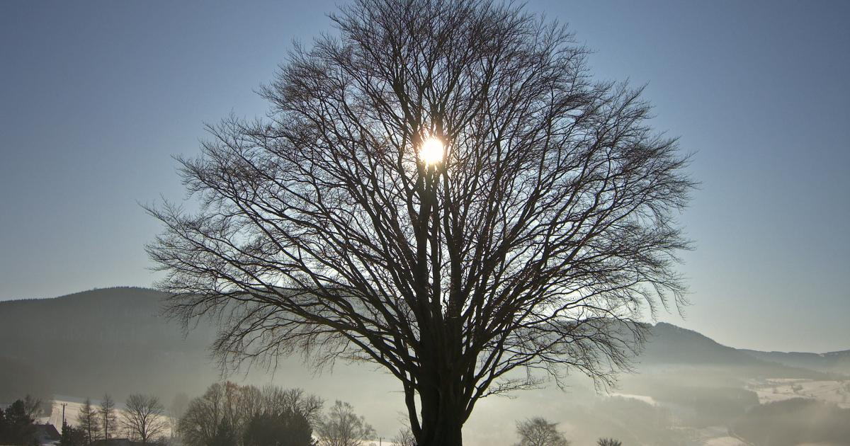 What and When is Winter Solstice