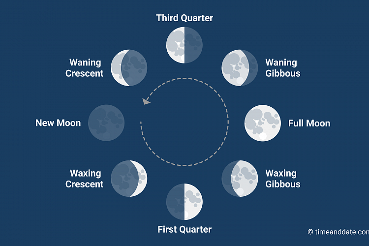 Image result for moon phases images