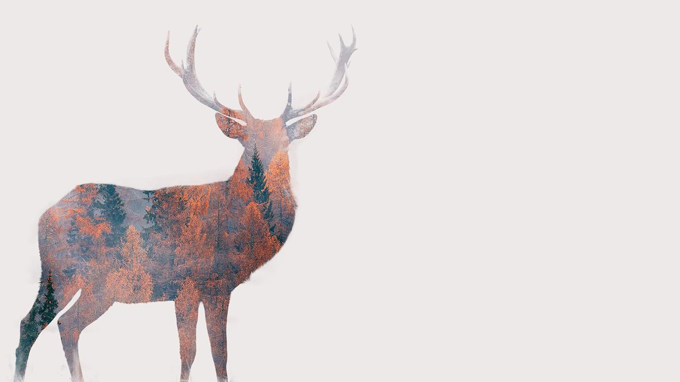Hintergrundbilder  Bume Wald fallen Illustration