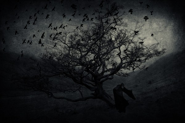 Fond 'cran Paysage Des Oiseaux Monochrome Fonc Nuit Horreur La Nature Ciel