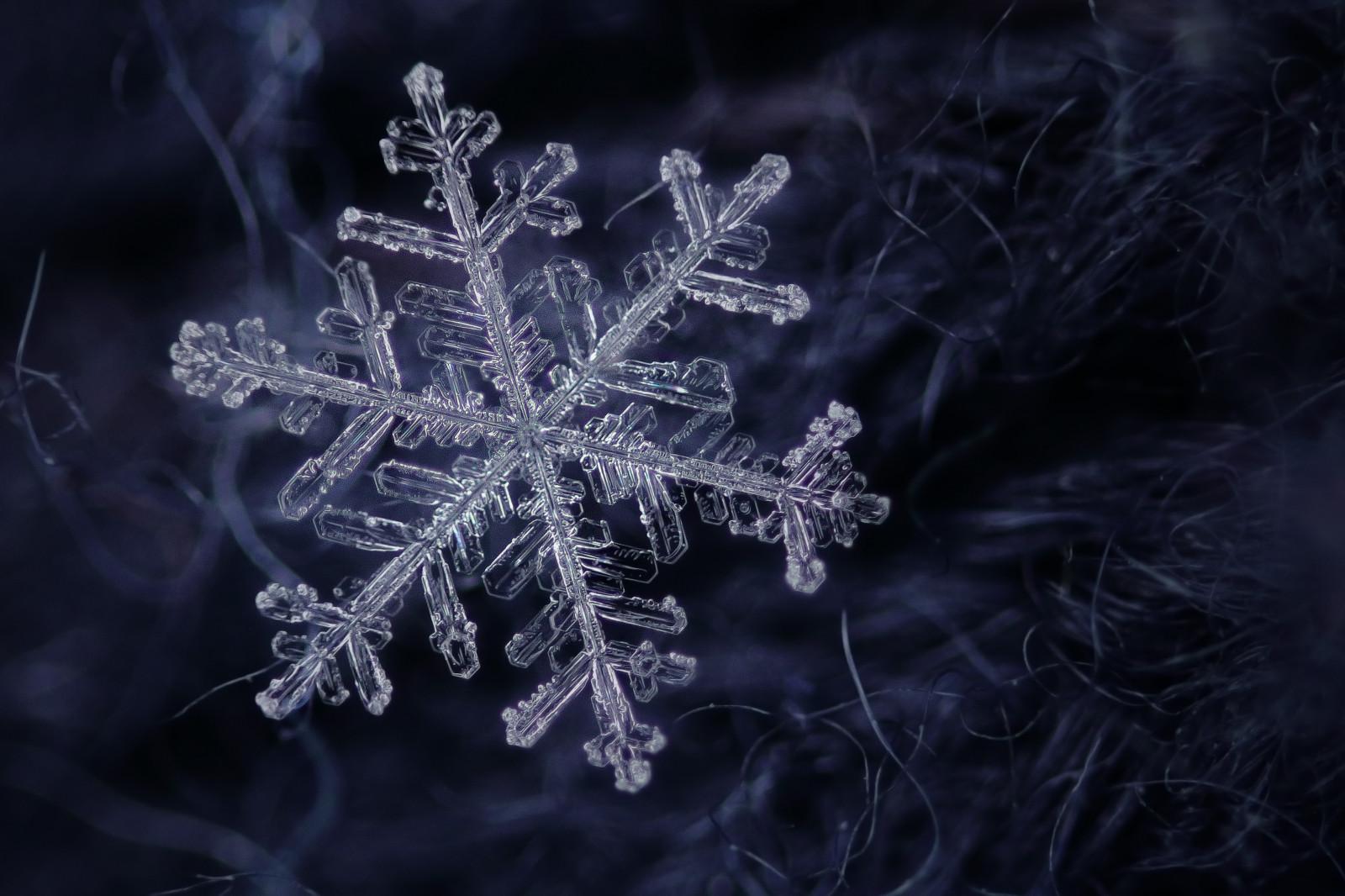 Snow Falling Desktop Wallpaper Wallpaper Macro Realmacro Snow Snowflake