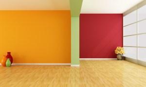 Fondos de pantalla : habitación pared diseño de interiores color piso Paredes maceta