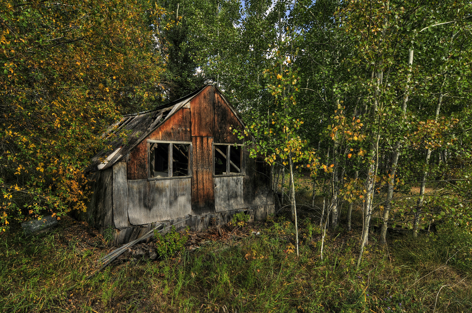 Wallpaper Fall Farmhouse Wallpaper Landscape Forest Old Building Abandoned