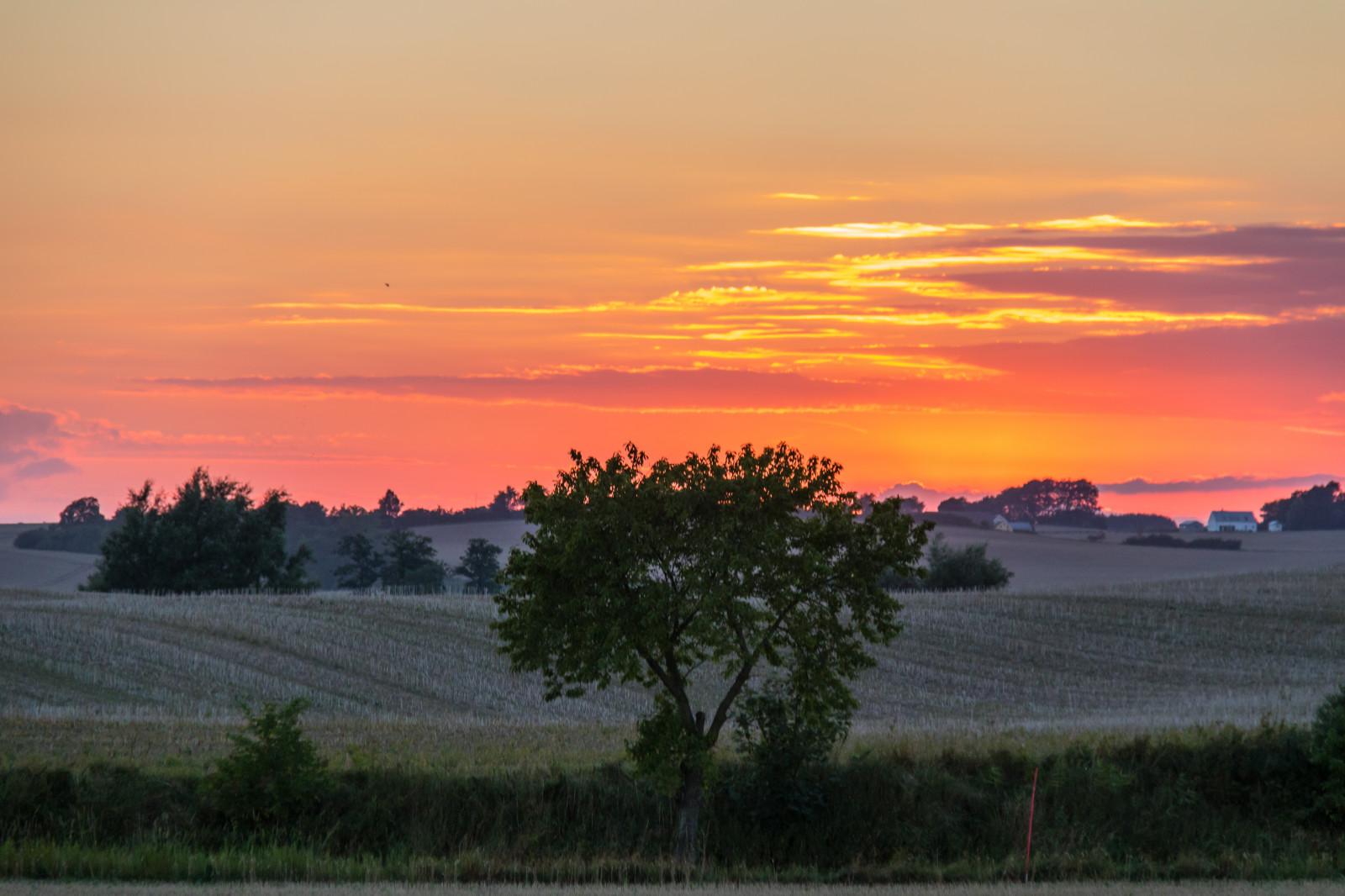 Sfondi  paesaggio tramonto collina campo Alba sera