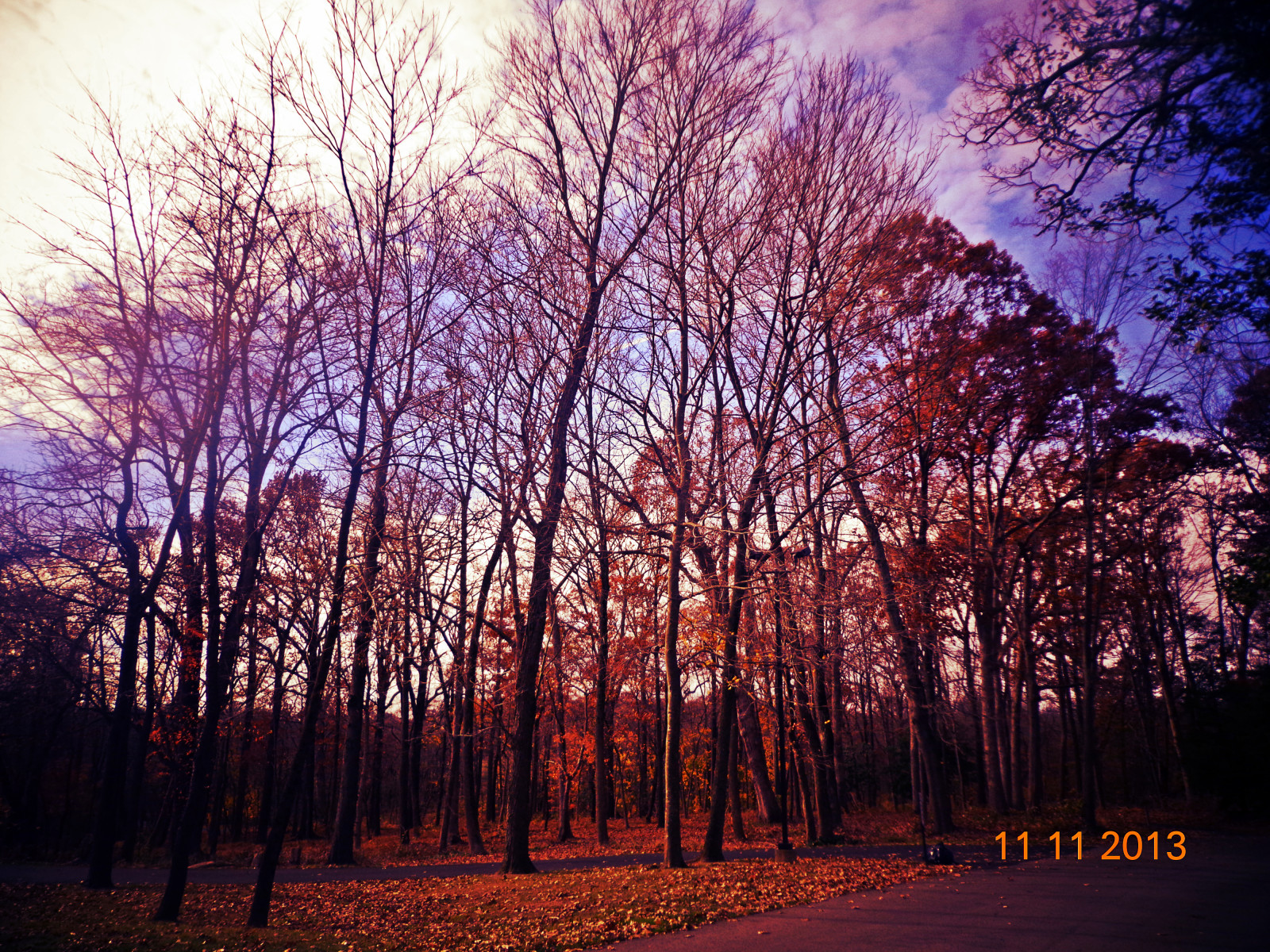 Pretty Fall Wallpapers Wallpaper Trees Fall White Black Sunset Nature