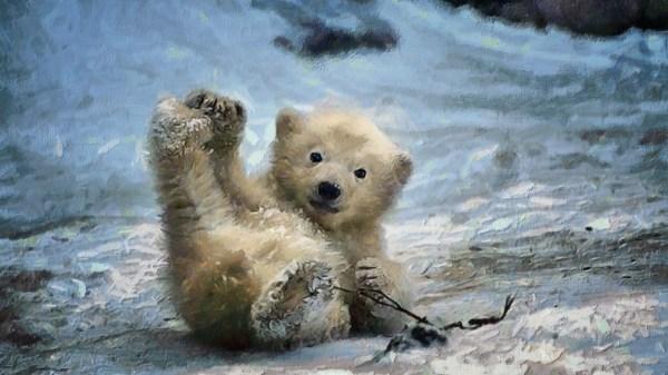 Wallpaper Painting Digital Art Nature Snow Winter Wildlife Polar Bears Baby Animals