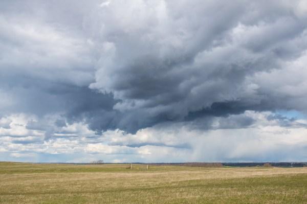 Grassland Storm Cloud Painting