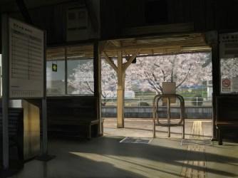 anime station train interior window architecture urban area fondo pantalla covering tourist attraction wallhere konachan wallpapers hd scenic blossoms cherry