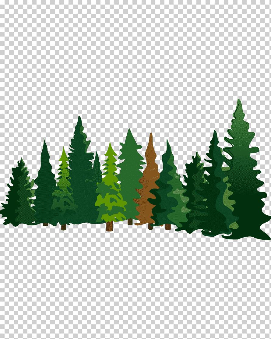Cartoon Grass Png : cartoon, grass, Green, Trees, Illustration,, Cartoon, Spruce,, Material,, Character,, Leaf,, Grass, Klipartz