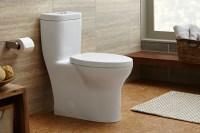 Easy to Clean Bathroom   Easy to Clean Bathroom Design ...