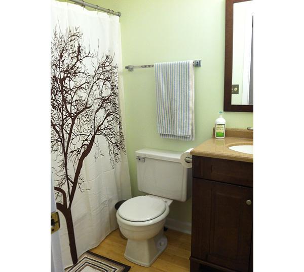 Small bathroom reveal