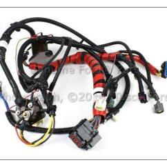 7 3 Powerstroke Engine Wiring Diagram Boat Trailer Australia 1995 Harness Free Download Oasis Dl Co Fuel Injector Wire Center U2022 Ford At