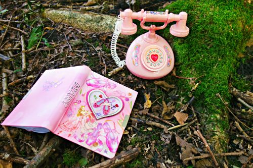 small resolution of pink rotary phone toy and pink hardbound book preview