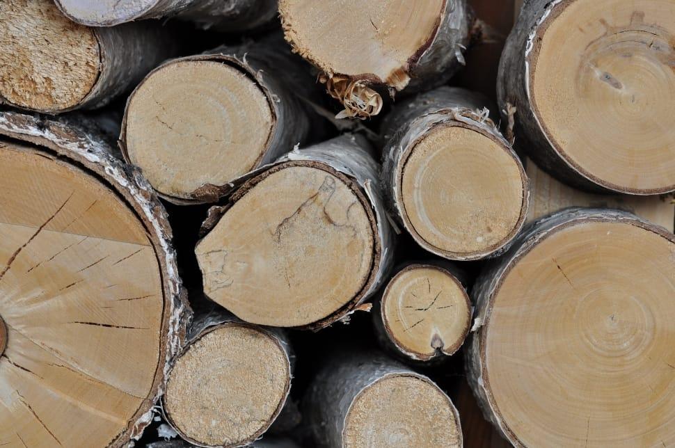 wood logs free image