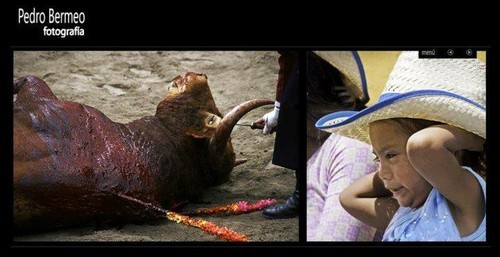 Resultado de imagem para Crianças nas touradas em Portugal
