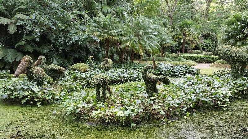 Parque Terra Nostra- São Miguel- Açores