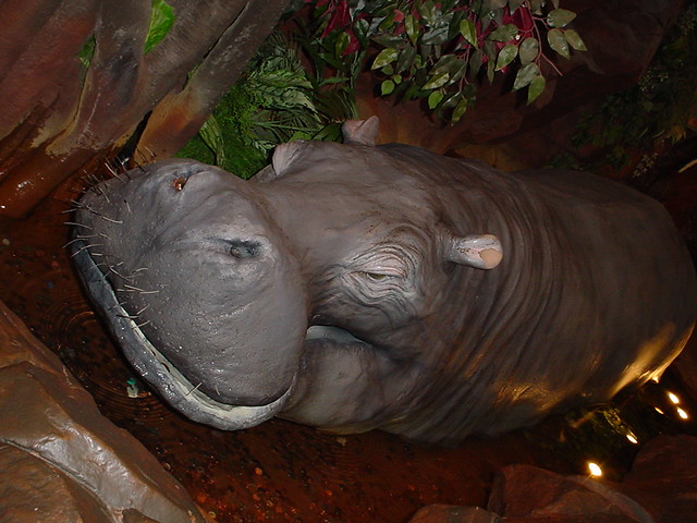 At The Rainforest Cafe Godverbs Flickr