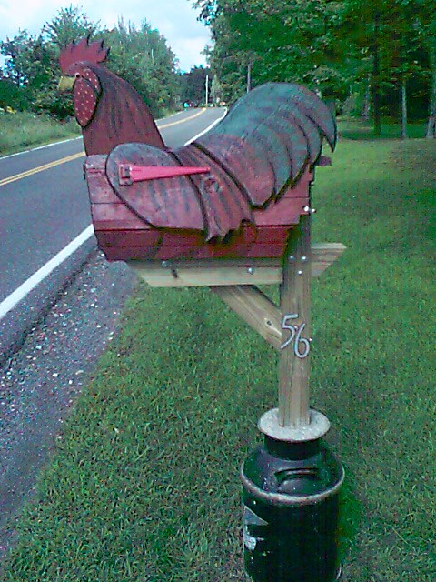 Our big chicken mailbox  Well really its a rooster but
