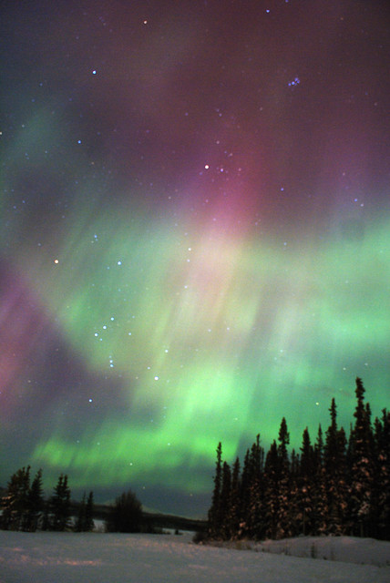 Aurora in Whitehorse Yukon Canada  Taken at Lake