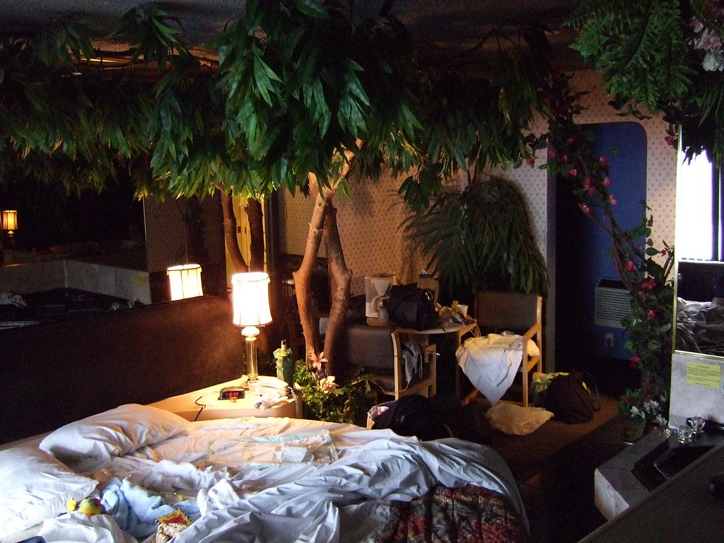 Adventure Inn Reno. Room 8 With A Large Plant In It