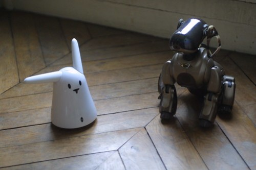 Aibo meets Nabaztag: first meeting