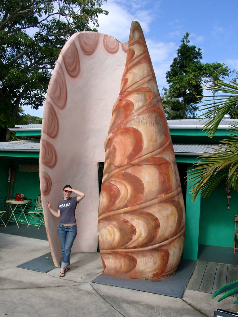 Big Shell de Tewantin