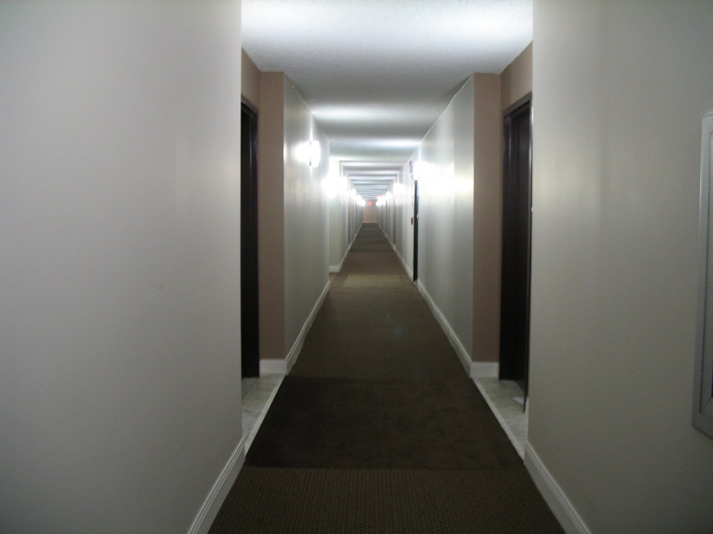 the infinite hallway of massive excitement  my moms
