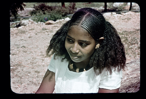 Young Eritrean Woman With Braided Hair Gold Ornaments