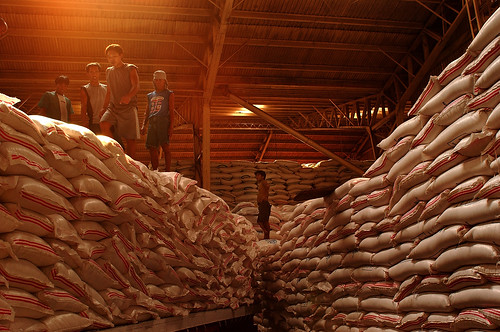 Rice warehouse  A shipment of rice is stacked in a
