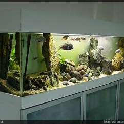 Kitchen C Best Cabinet Cleaner Aquarium/malawi | View At My Malawi-tank. The Tank Is ...