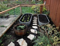New vegetable garden | Fence and metal tubs are farm ...