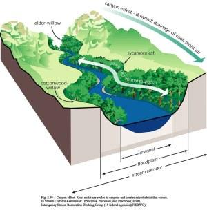 Stream Corridor Diagram | This diagram demonstrates the