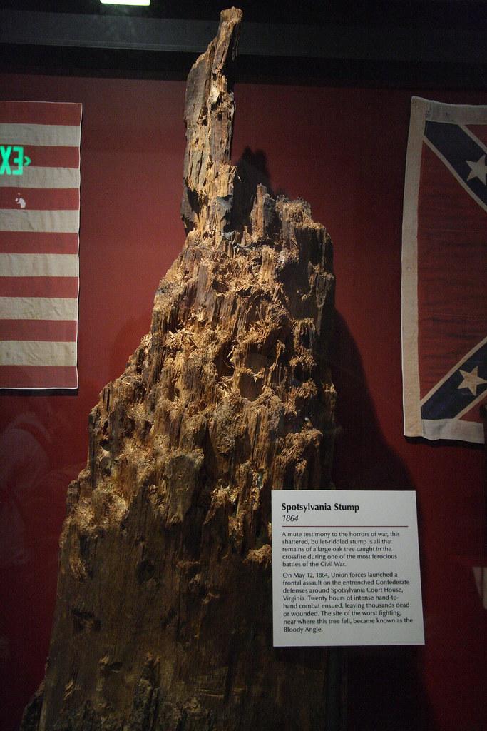 Spotsylvania stump  Remains of an large oak tree blasted