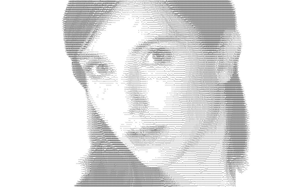 3d Wallpaper Portrait Flower L Art Du Portrait Ascii The Ascii Art Of