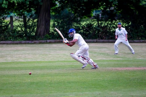 20150622_Cricket Shot